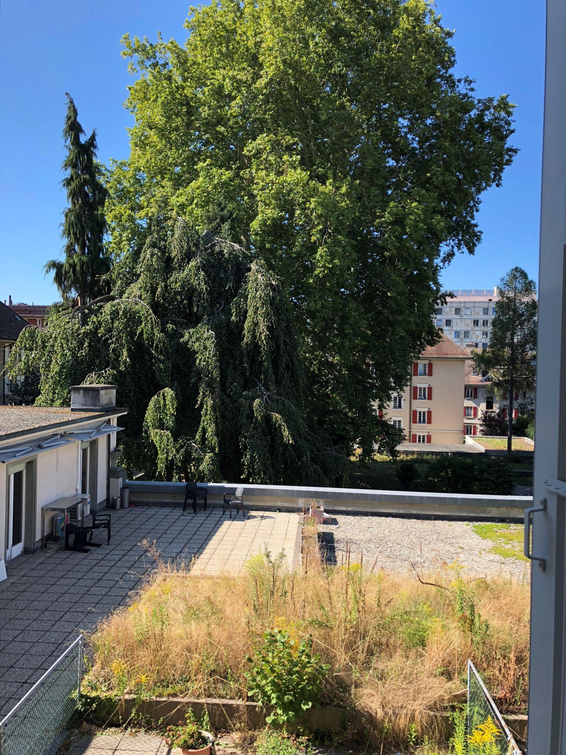 Rue des Fontenailles 13, Lausanne - 2,5 pièces 16
